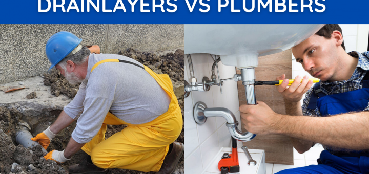 drainlayer vs plumber